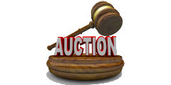 Auction 240x120